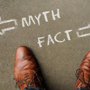 Bruna skinnskor ovan ifrån med text myth fact skrivet på marken